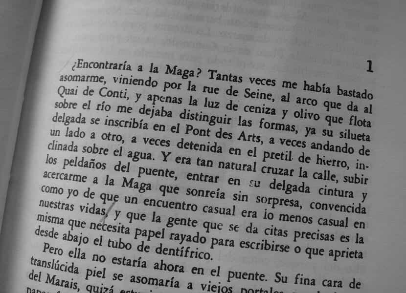 rayuela libro
